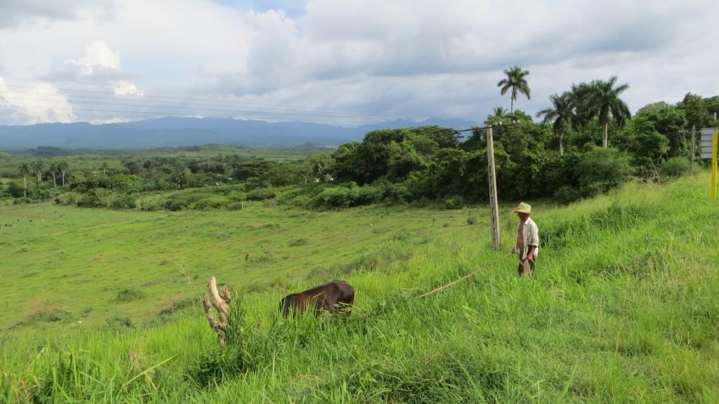 Kuba Escambray IMG_7589