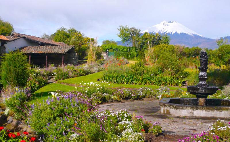 ecuador-Cotopaxi-Blick-von-Hacienda