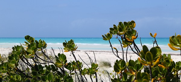 Kuba-Strand-Cayo Coco